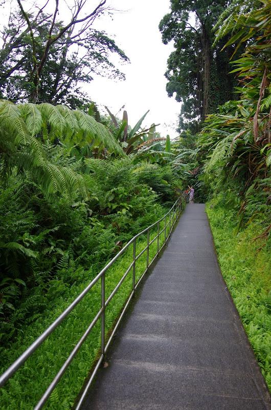 06-23-13 Big Island Waterfalls, Travel to Kauai - IMGP8877.JPG