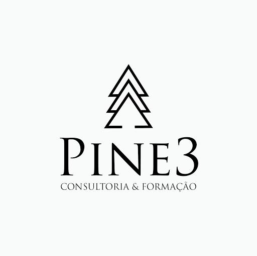 A Pine3 – Consultoria & Formação Lda pretende recrutar para o seu quadro de pessoal um (1) Estagiário de Economia/ Gestão Empresarial