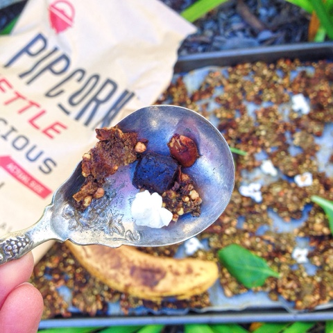 Cocoa Crunch Granola (Gluten Free, Vegan)