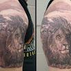 Lion #4