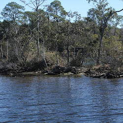 Fowl Marsh from Boat Feb3 2013 137