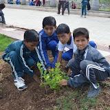 Gurukul Green Revolution (57).jpg