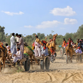 f10 by Abdul Rehman - Transportation Other (  )