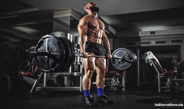 What it Means to Actually Train Hard?
