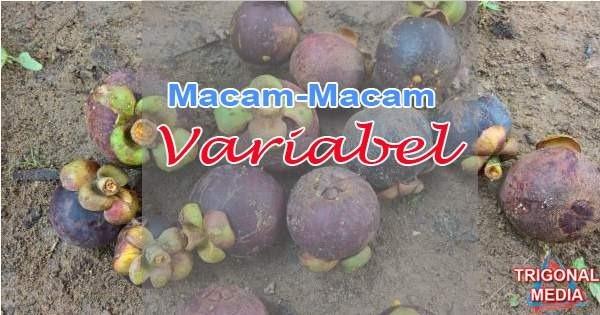 Macam-Macam Variabel