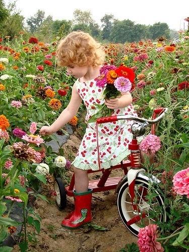 de cometas, de campos floreciendo, de cantos de pájaros, de inspiración
