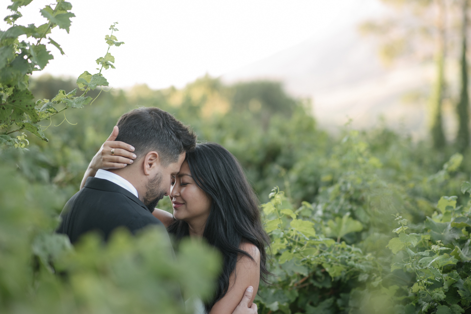 Grace and Alfonso wedding Clouds Estate Stellenbosch South Africa shot by dna photographers 738.jpg