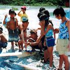 2002_08 特別教室・祝島