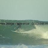 _DSC0246.thumb.jpg
