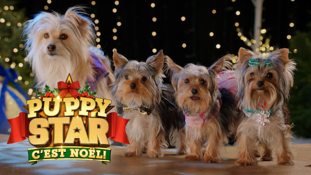 Puppy Star: it's Christmas