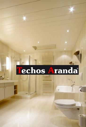 Imagen de techos baños Madrid
