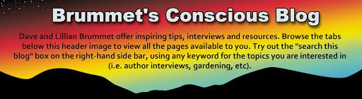 Brummet's Conscious Blog