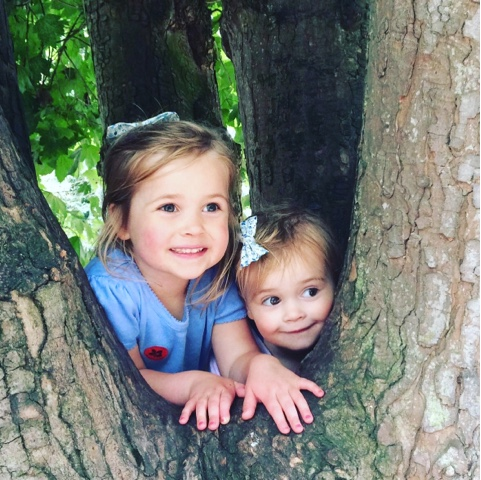 Climbing trees in the woods - things to do in the summer holidays