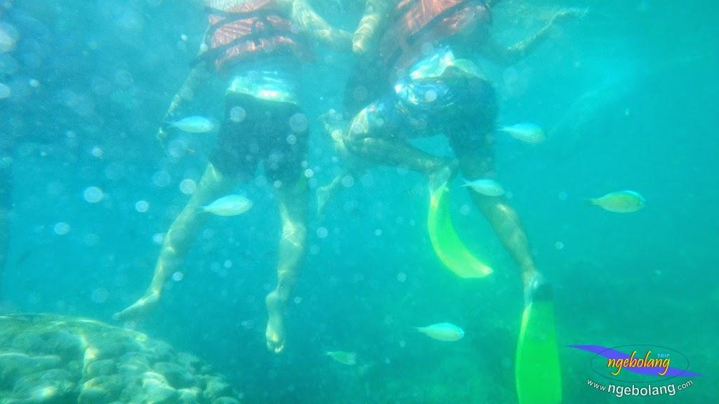 pulau pari 27-28 september 2014 pen 11