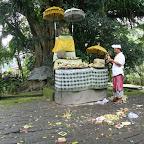 0537_Indonesien_Limberg.JPG