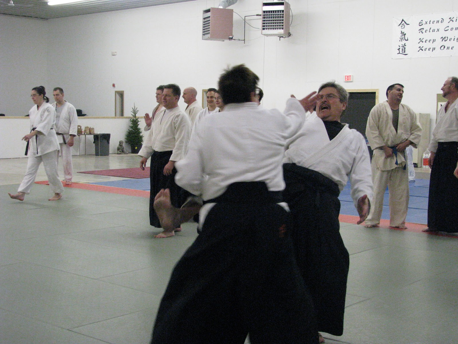 Fall for Toyoda Jan 2012 B - Shugyo Cultural Center - Onshinkan Dojo