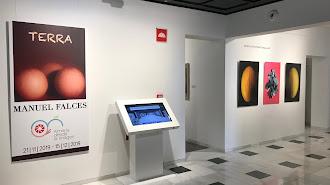 \'Terra\', exposición con imágenes de Manuel Falces.