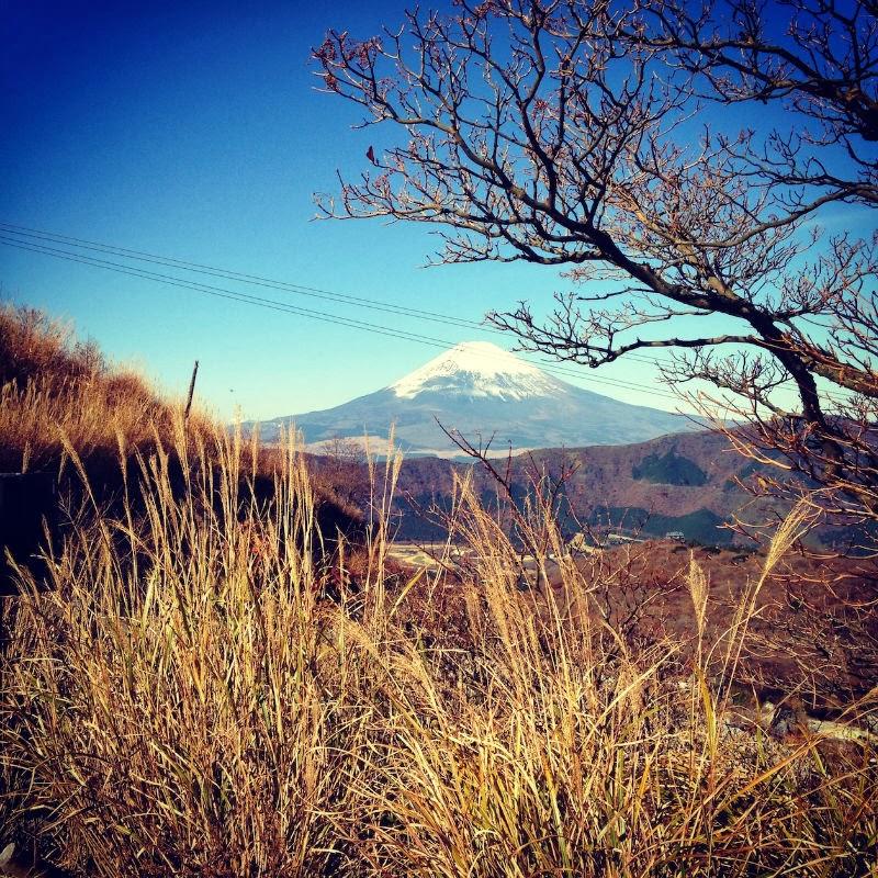 Magnificent Fuji-san