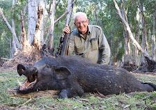 Mr Hoffmann with a big trophy wild boar taken in the paperbark swamps