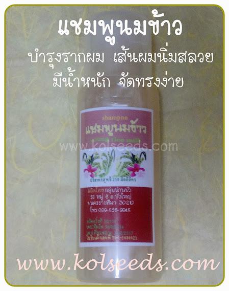 แชมพู น้ำนมข้าว ผลิตจากข้าวอ่อน 7-10 วัน อุดมไปด้วย วิตามินบี1 บี2 และ วิตามินอี