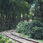 Vía férrea turística