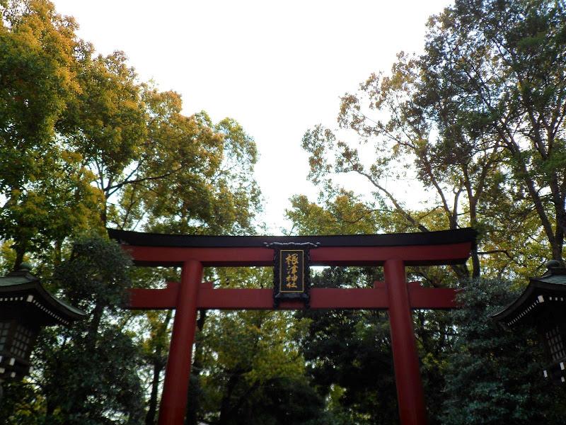 2014 Japan - Dag 11 - tom-SAM_0593-0015.JPG