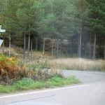 Oravatonnimaastoa ja -kilpailukeskusta 2012-09-19