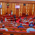 Reopening of airports on June 21 unrealistic - Senate