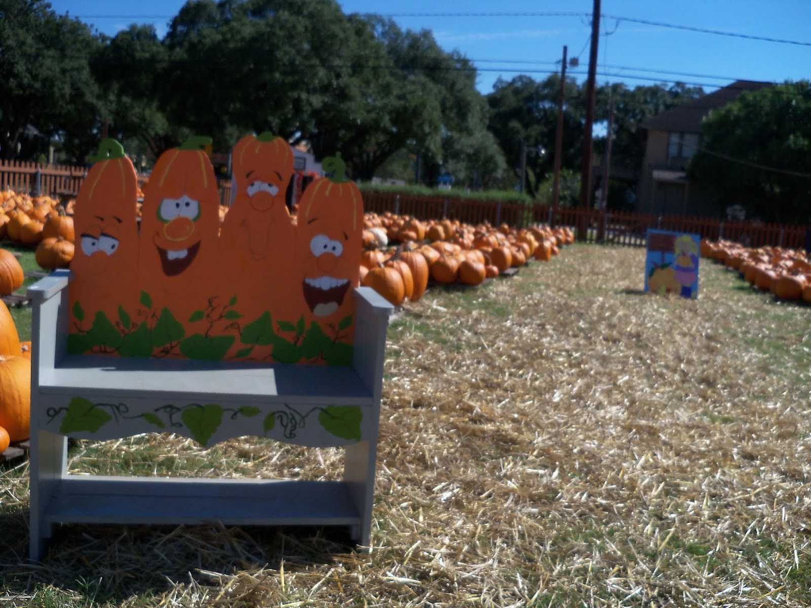 Pumpkin Patch 2015 - 100_0387.JPG