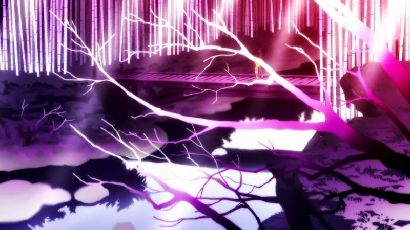 Monogatari Series: Second Season - 10 - monogatarisss_10_056.jpg