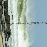 _DSC9611.thumb.jpg