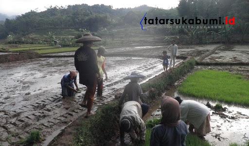 Bahas Lahan Pertanian Berkelanjutan, DPRD Kabupaten Sukabumi Janjikan Jaminan Kesehatan Gratis Kepada Petani