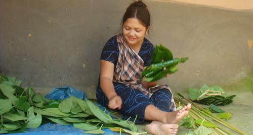 Adivasi girl sorting Paan leaves