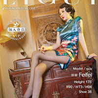LiGui 2015.06.10 网络丽人 Model 菲菲 [35+1P] cover.jpg