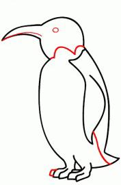 تعليم رسم البطريق في 6 خطوات سهله تسامح