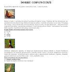 GRA PLANSZOWA POTYCZKI Z BAŻANTEM_06.jpg