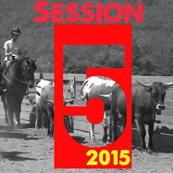 5 Session 2015