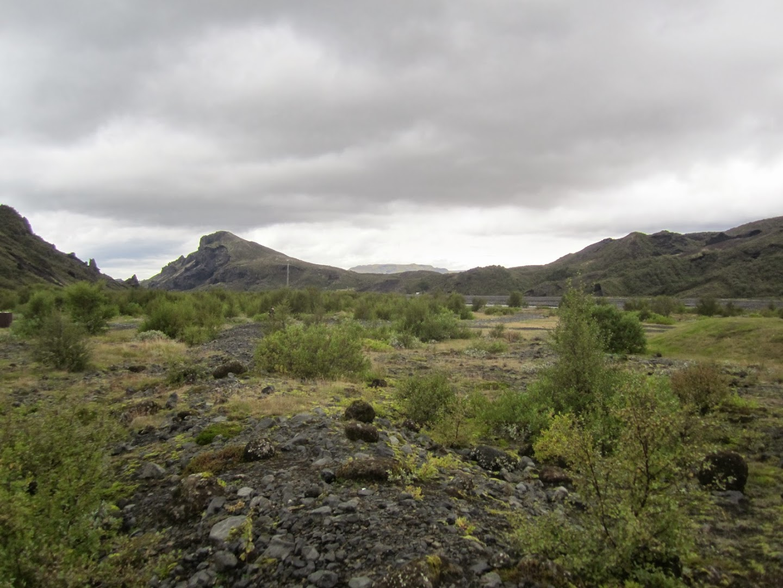 Nice valley and some bushes at Porsmörk, near Eyjafjallajökull. VK