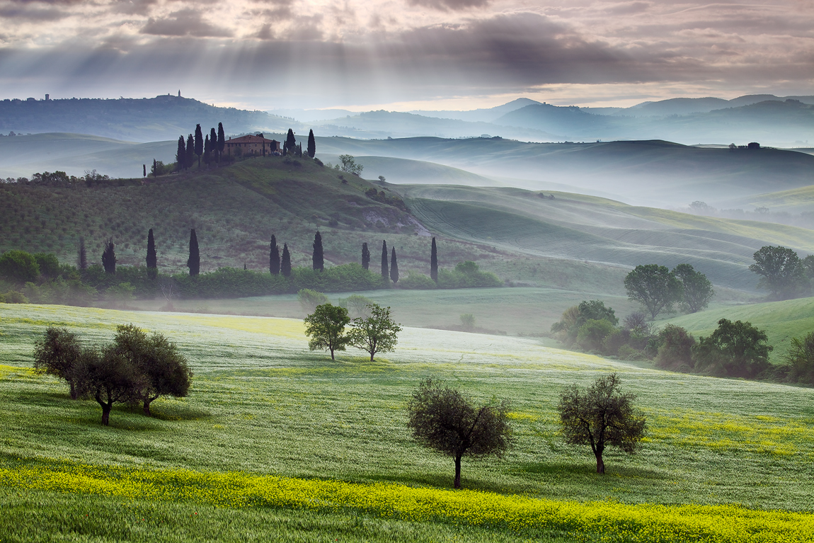 a beautiful, green morning foggy valley in Tuscany