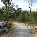 Shared path near the Bullocks Loop bridge intersection (295030)