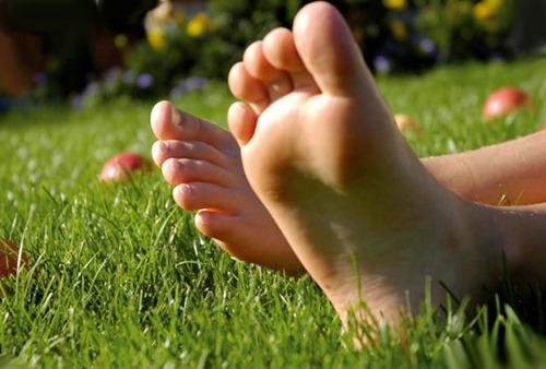 Здоровые ножки отдыхают на лугу