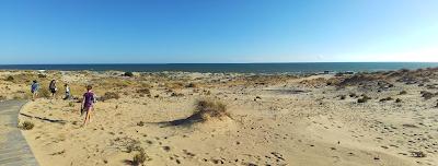 Playa Matalacañas