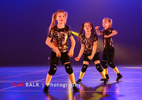 Han Balk Voorster Dansdag 2016-5010-2.jpg