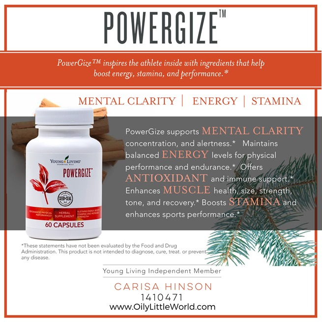 12-PowerGize