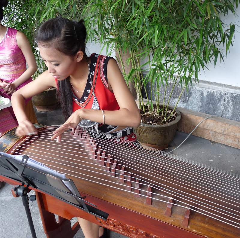 Chine .Yunnan,Menglian ,Tenchong, He shun, Chongning B - Picture%2B648.jpg