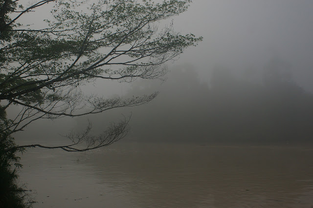 Le matin au bord de la Kinabantang à Sukau (Sabah), 15 août 2011. Photo : J.-M. Gayman