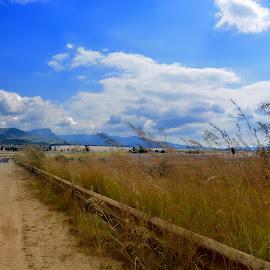 Roadtrip by Danette de Klerk - Landscapes Travel ( sky, roadside, blue sky, road trip, daylight )