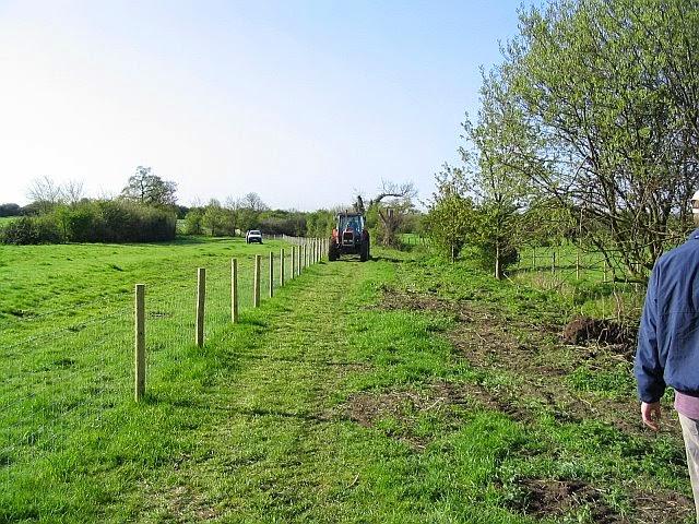 Grassfield Footpath - Hedge Planting - 2075828510233_0_BG.jpg