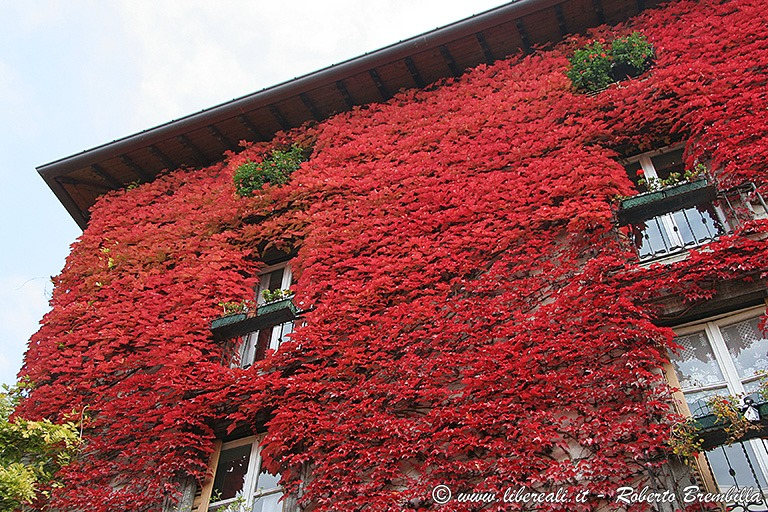 [2_Varenna-colori-autunno_0145]