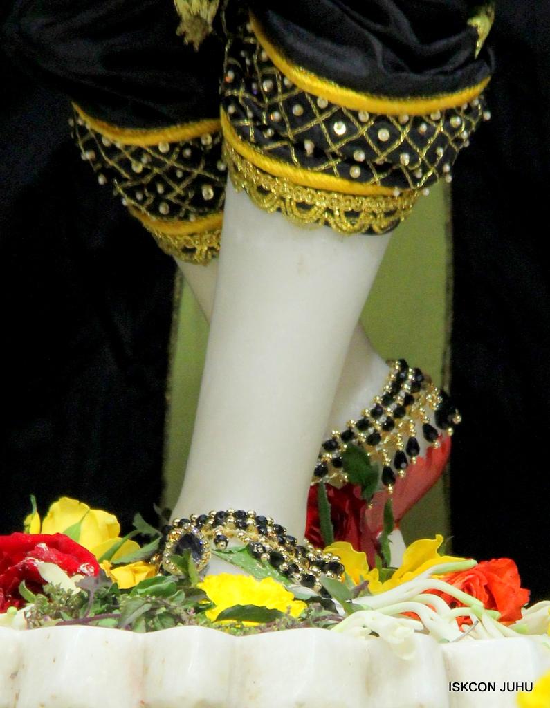 ISKCON Juhu Sringar Deity Darshan on 19th Nov 2016 (42)